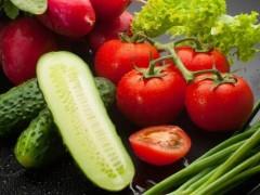 不同品种的蔬菜的灌溉水量需求方法
